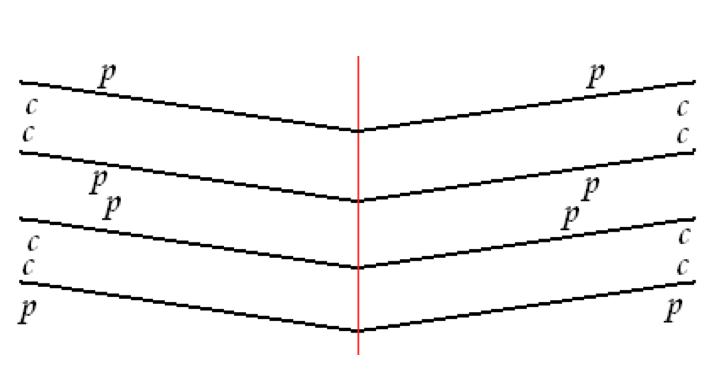 Cuaderno según la regla de Gregory p = pelo, c = carne