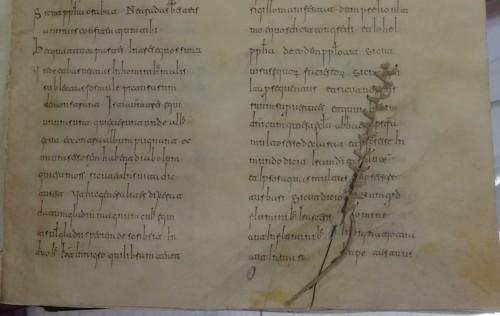 Beato de El Escorial, Monasterio, ms. &.ii.5, fol. 77 (detalle)